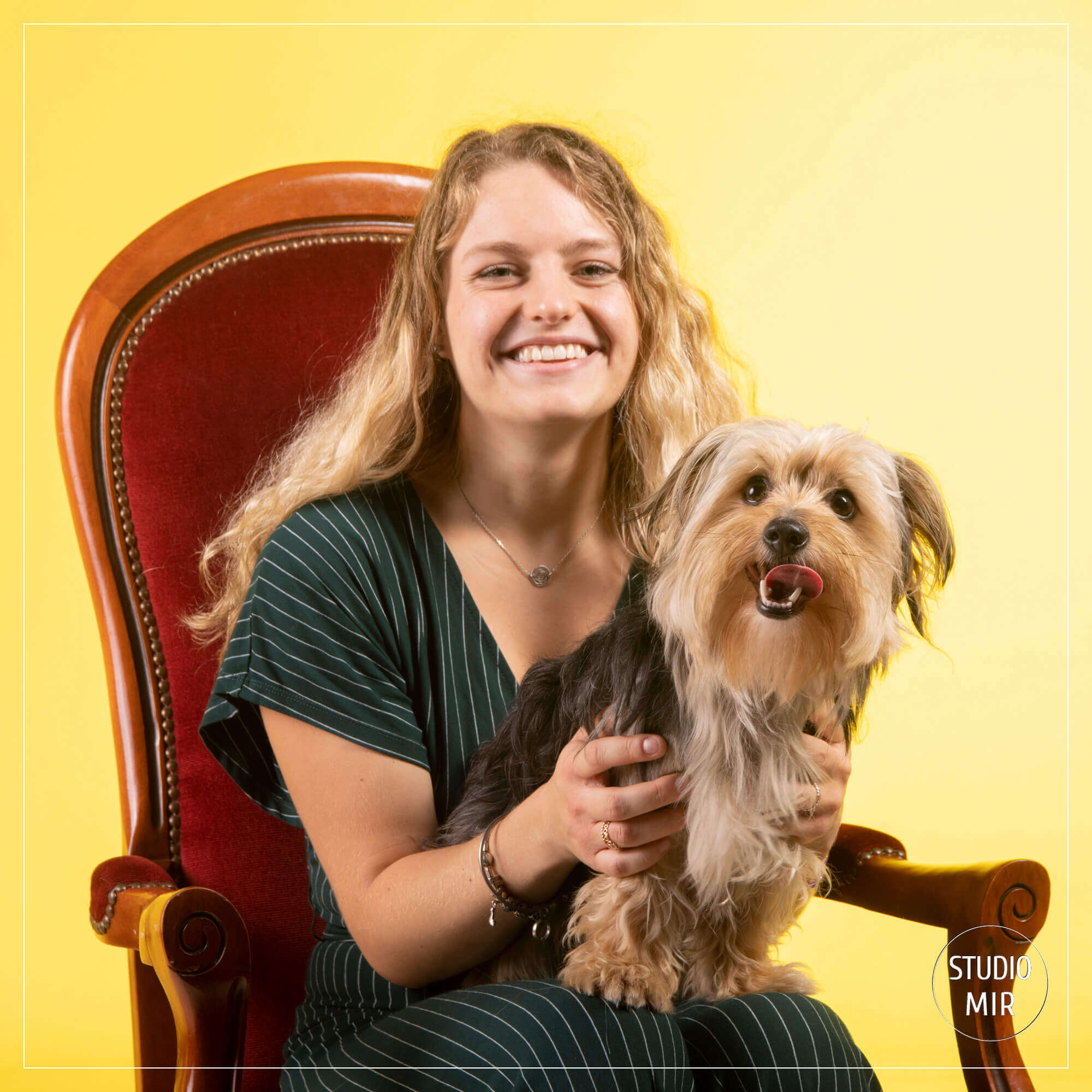 Séance photo chien colorée en studio dans le 94